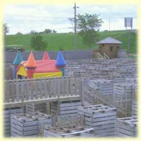 Fort Custer Maze