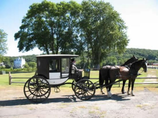 Bilde fra Allegra Farm And The Horsedrawn Carriage And Sleigh Museum Of New England