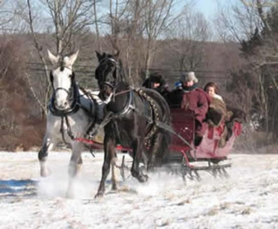Imagen de Allegra Farm And The Horsedrawn Carriage And Sleigh Museum Of New England