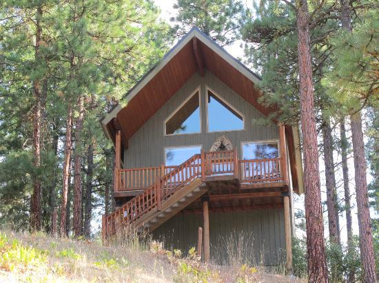 Mountain Home Lodge: Stuart Roost Cabin