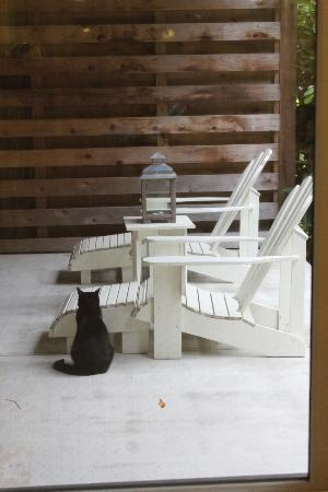 Farmhouse Inn & Restaurant: Private deck off of room with our morning visitor, Charlotte the cat