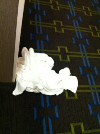 Holiday Inn: dirty towels that we threw outside.