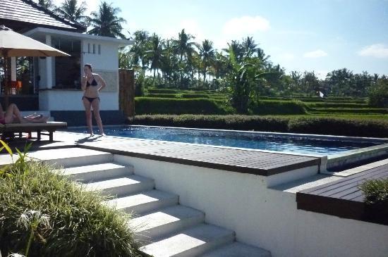 The Samara: the pool