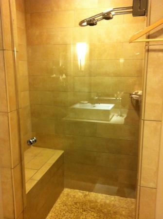 L'Auberge de Sedona: superb shower