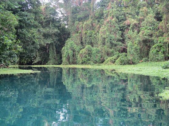 Matevulu Blue Hole: pristine Matevulu River