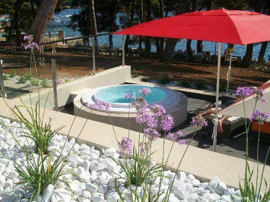 Hotel Laguna Parentium : Pool