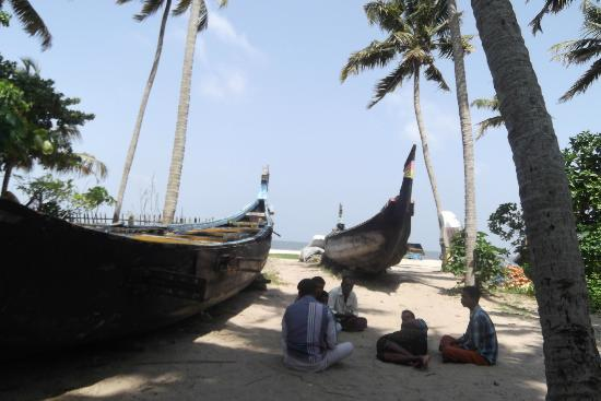 ‪‪Vallis Gardens‬: Fishing boats of Kerala‬