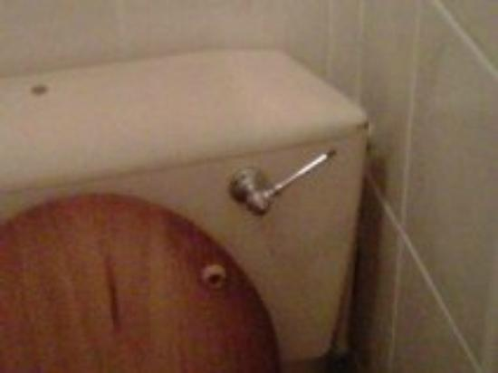 Ashleigh House Hotel: toilet handle missing