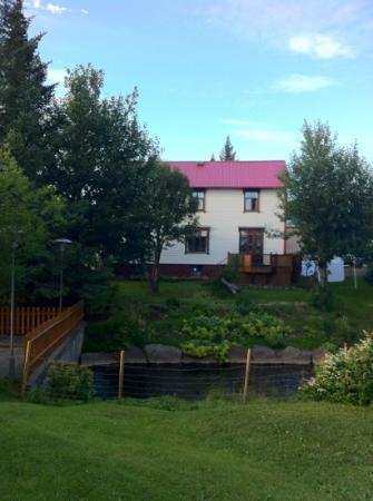 Guesthouse Arbol: vista exterior