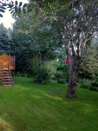 Guesthouse Arbol: jardín