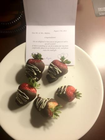 Delta Burnaby Hotel and Conference Center: honeymooners welcoming letter<3