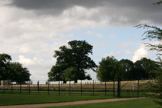 Godinton House & Gardens: surrounding fields.