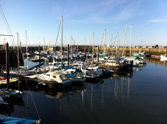 The Waterfront: harbour