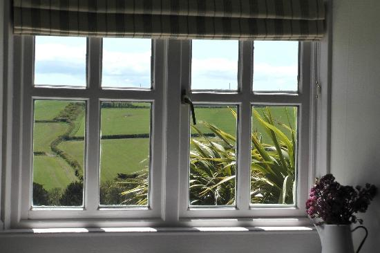 Lellizzick Farmhouse Bed and Breakfast: room 3