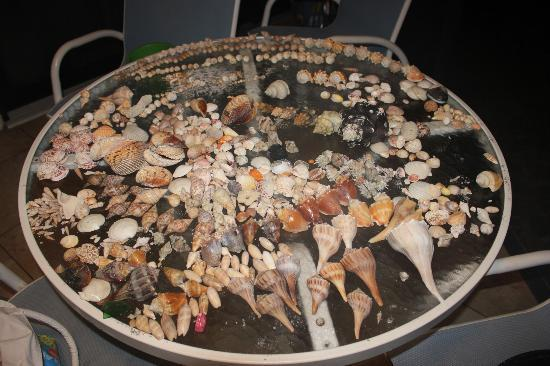 Pointe Santo de Sanibel: Shells!