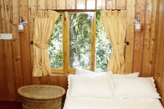 Shola Periyar Tree House: window view