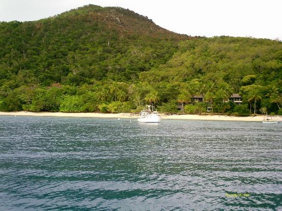 Fitzroy Island Resort: Approaching the island (the resort is glimpsed through the trees near the beach)