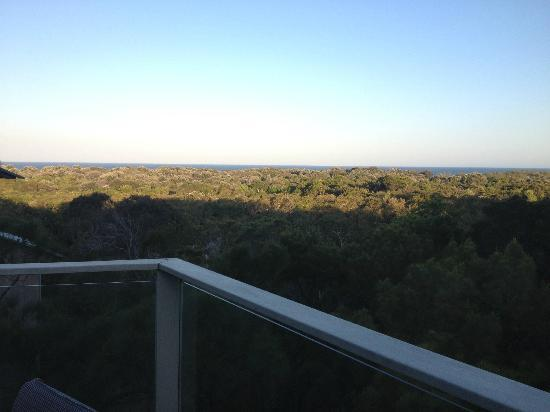 The Oasis Resort & Treetop Houses: View from the balcony