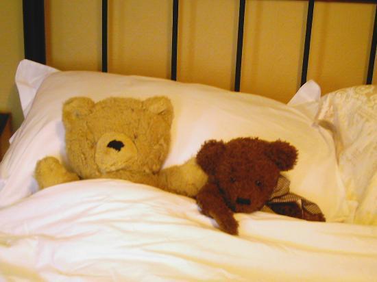 Kenella House : Teddies Like a Holiday Too but Need a Sleep Afterwards