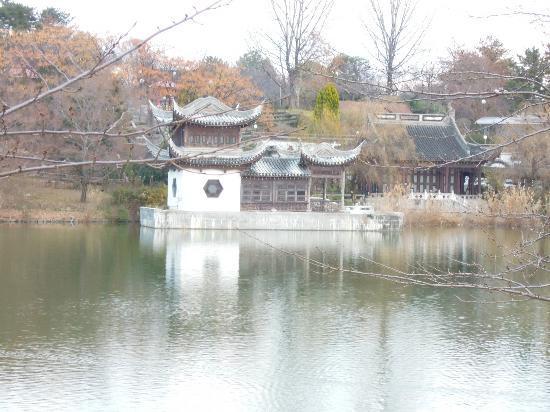 Flower Expo Memorial Park Tsurumi Ryokuchi: 美麗的庭園。