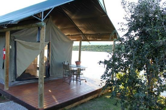 Buffelsdrift Game Lodge: Tent op die water