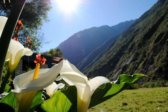 Cusco Wonderful Day Tours: Along the trail...