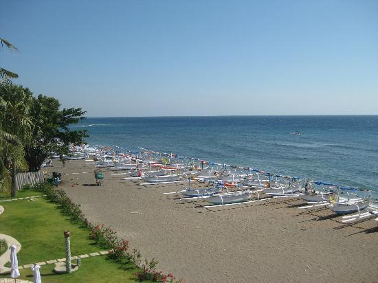 Palm Garden Amed Beach & Spa Resort: Beach during the day