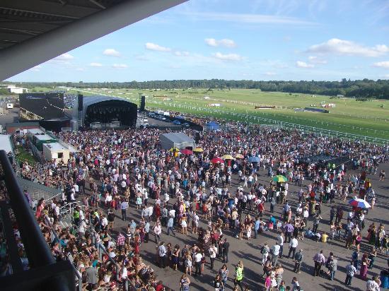 Newbury Racecourse: View from Balcony