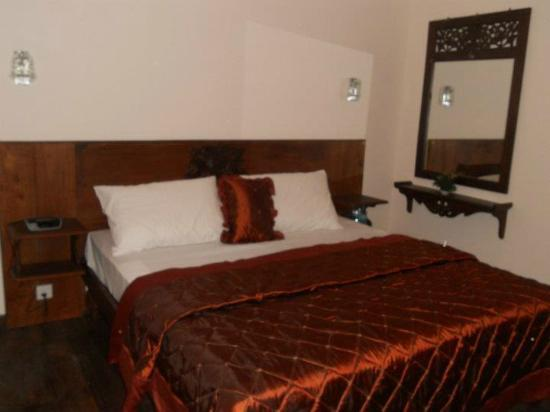Pello Lake Resort: Double Room