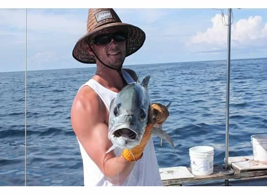 Mr grumpy gills this fish was released picture of for Fishing in bermuda