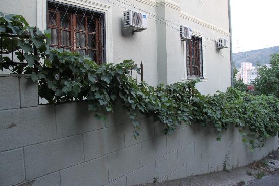 Alliance Hotel: Street view