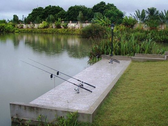 Teak Tree Lake:                   Ever fancied fishing in paradise?