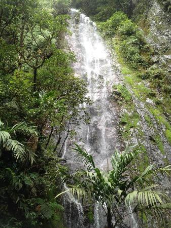 Parque Nacional La Tigra: la cascada, parque la tigra, francisco morazan, honduras
