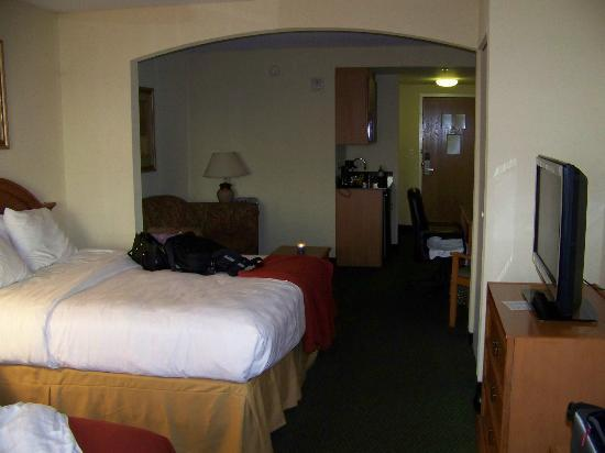 Holiday Inn Express Hotel & Suites - Veteran's Expressway : Queen Suite - very roomy!!!