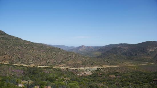 Namaqualand: Kamies Berge