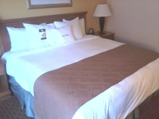 DoubleTree by Hilton Hotel Milwaukee Downtown : The great kingsize bed
