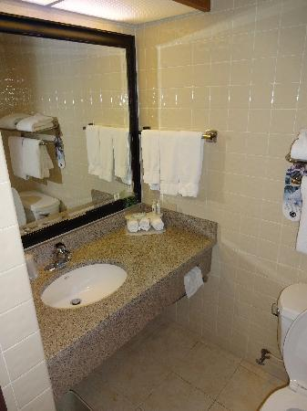 Holiday Inn Express San Antonio Airport: Bath - mirror