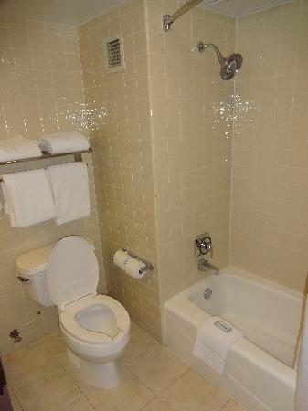 Holiday Inn Express San Antonio Airport: Bath - toilet