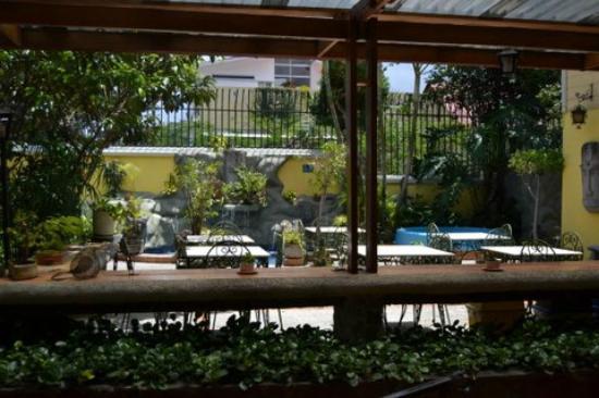 Hotel Don Carlos: Zona Ocio