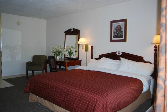 The Chatt Inn: Suite
