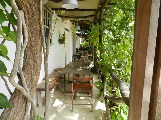 Posada La Laguna: Acá desayunábamos... hermoso lugar