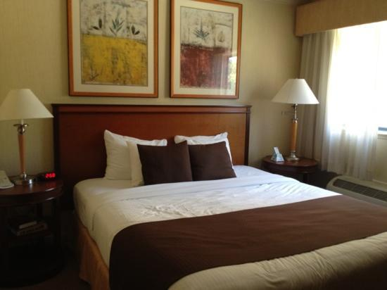 Best Western Plus All Suites Inn: king bed