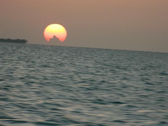 Belizean Shores Resort : From water taxi