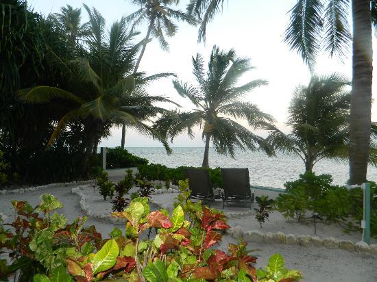 Belizean Shores Resort: View from Sea front room
