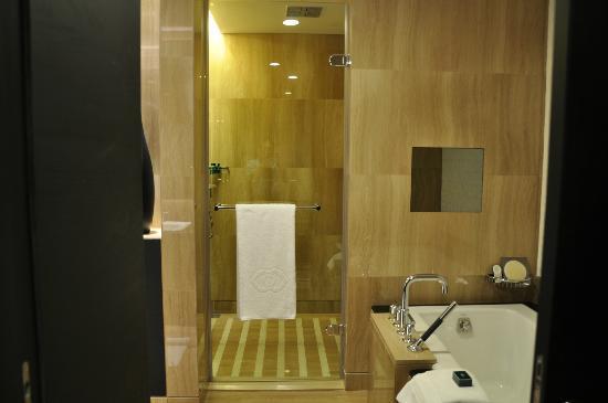 Sofitel Abu Dhabi Corniche: shower