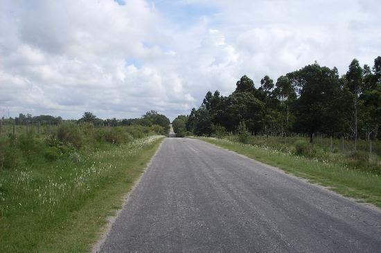 Granja Colonia: Ruta interna a Riachuelo