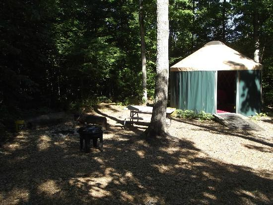 Wild Cherry Resort: Yurt campsite