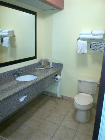 Comfort Inn & Suites North: view from doorway into bathroom