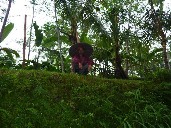 Jean de la Jungle Private Day Tours: Fermier