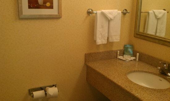 Fairfield Inn & Suites Toronto Brampton: Bathroom